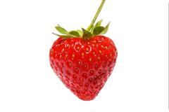 Week 10 baby embryo size strawberry