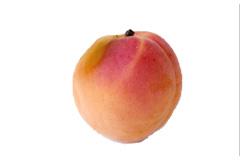 Week 11 baby fetus size apricot