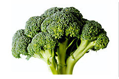 Week 26 baby fetus size broccoli
